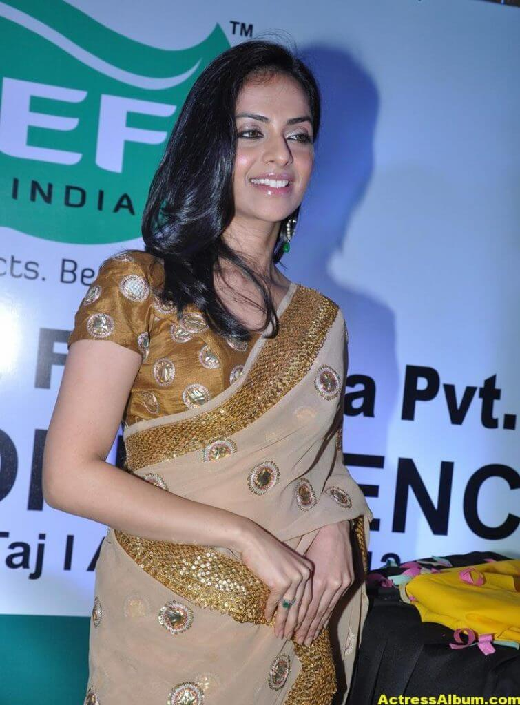 Richa Pallod Latest Photos In Hot Saree 4