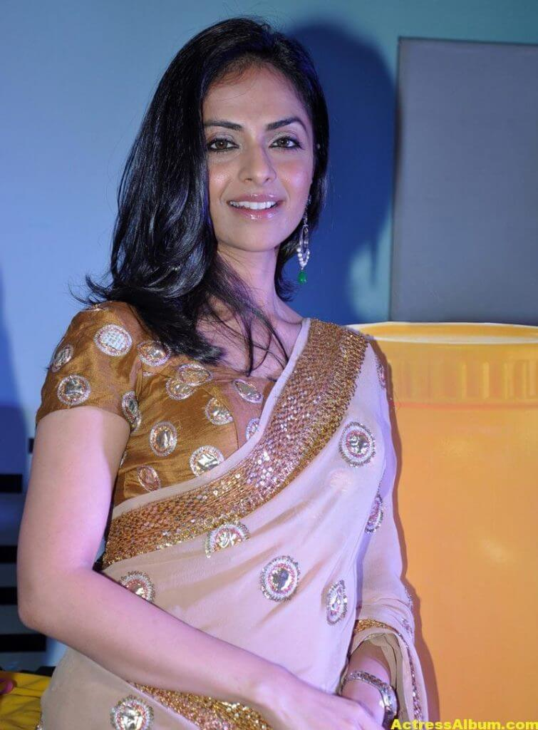 Richa Pallod Latest Photos In Hot Saree 5