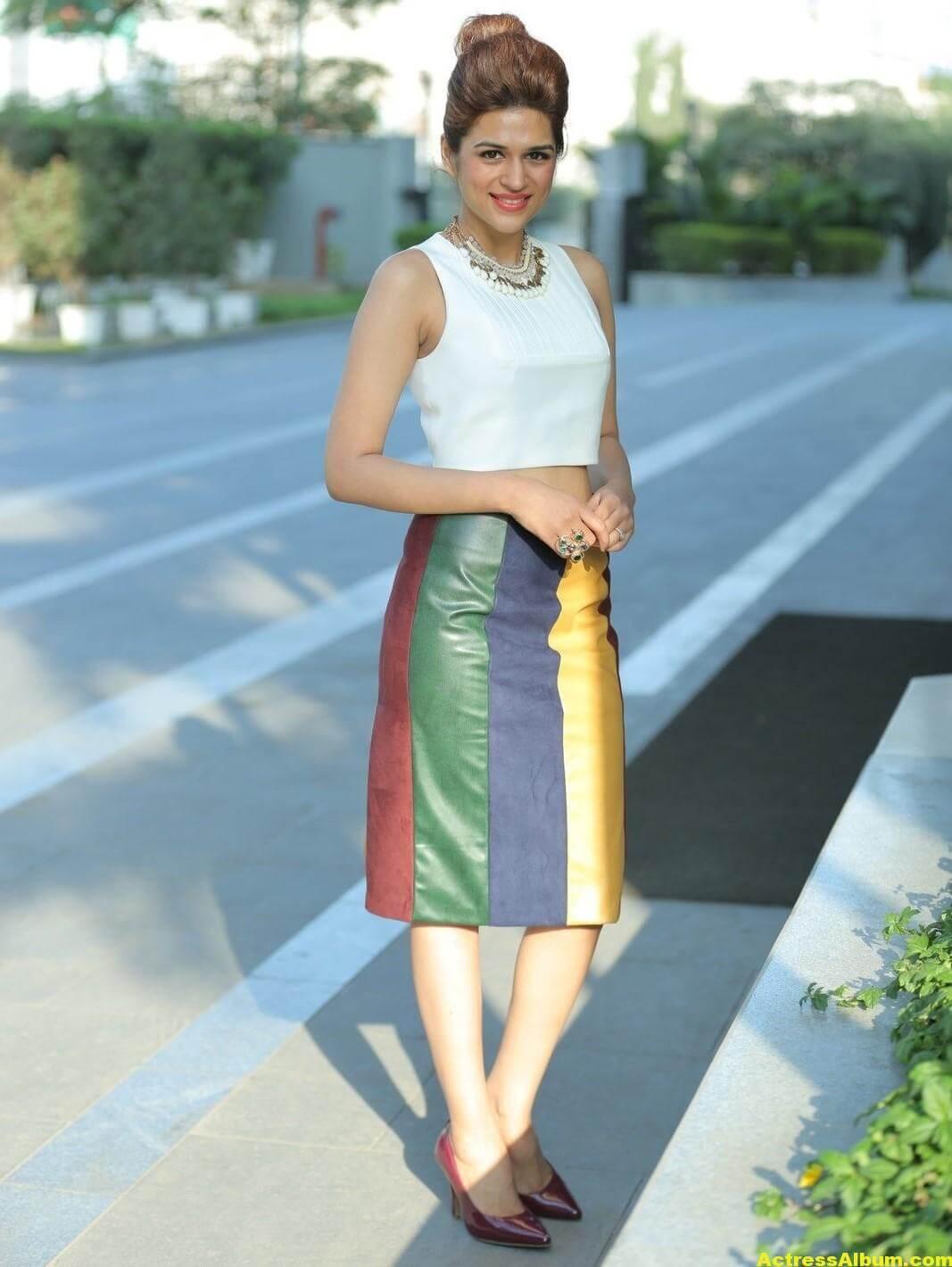 Shraddha Das Hot Legs Showing Photoshoot 2