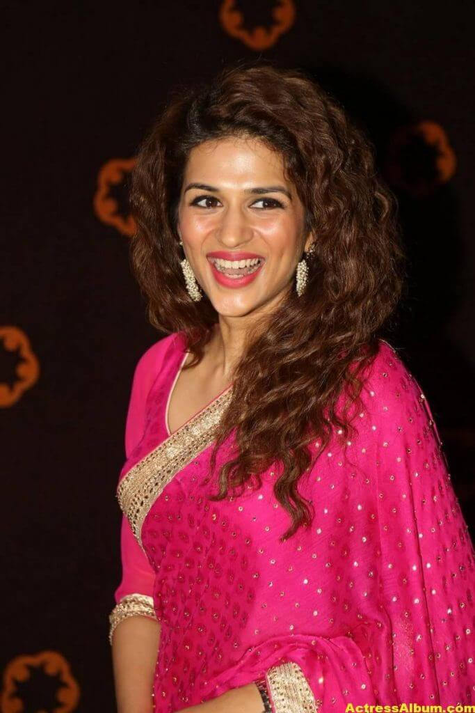 Shraddha Das Latest Hot Stills In Pink Saree (7)