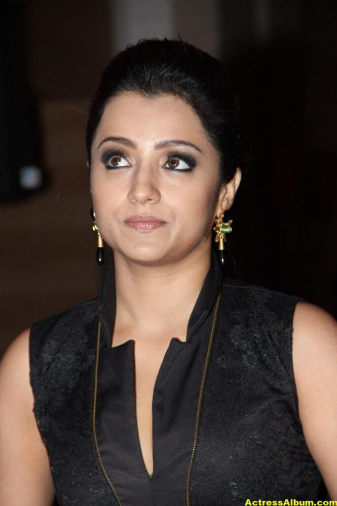 Trisha Latest Beautiful Stills In Black Dress 1