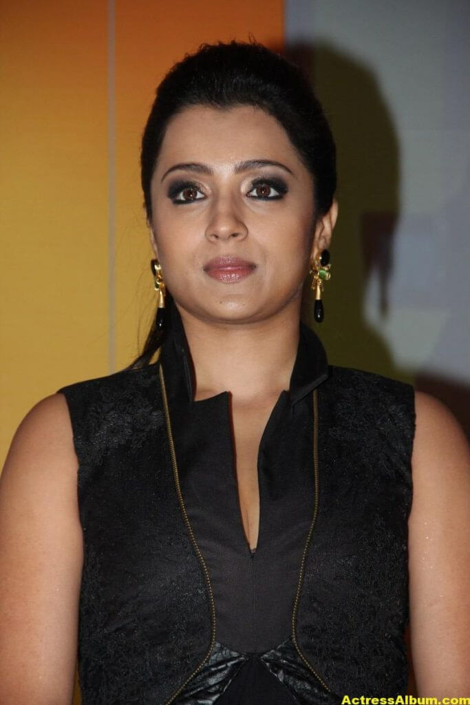 Trisha Latest Beautiful Stills In Black Dress 2