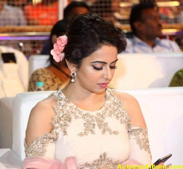 Rakul Preet Stills In Sarainodu Movie 5