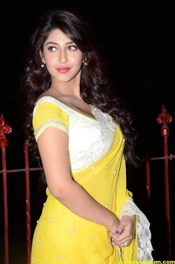 Sonarika Latest Images In Yellow Saree 1