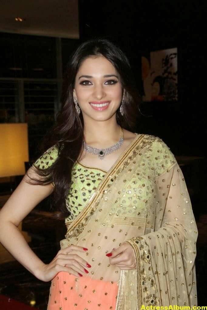 Tamanna Gorgeous In Saree Stills 3