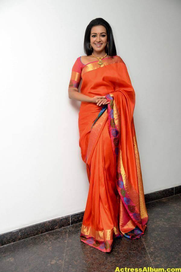 Catherine Tresa Latest Hot Photos In Orange Saree (5)