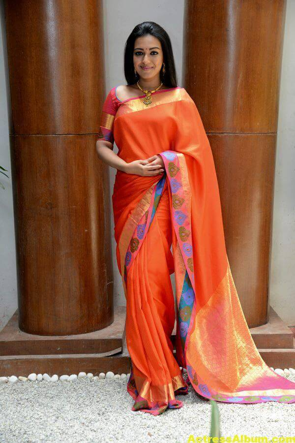 Catherine Tresa Latest Hot Photos In Orange Saree (7)