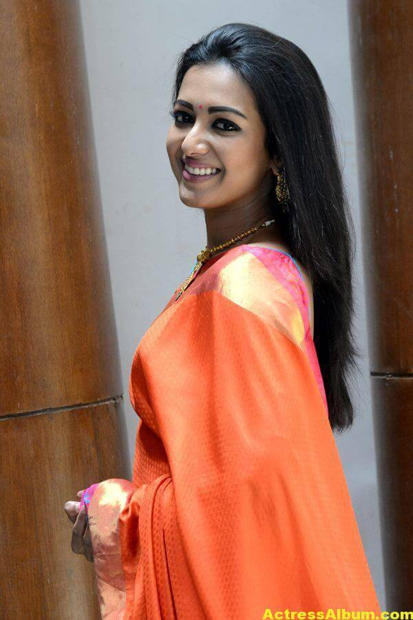 Catherine Tresa Latest Hot Photos In Orange Saree (8)