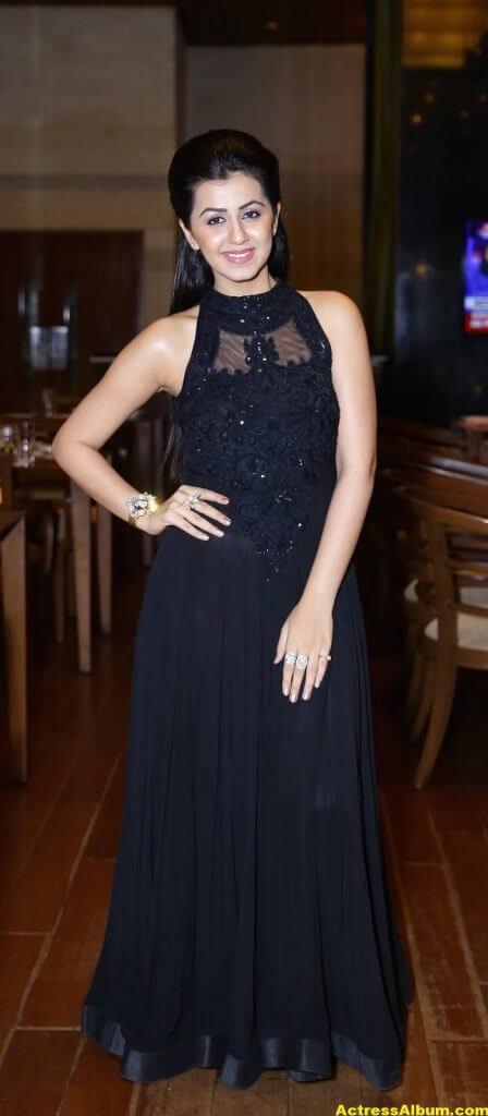 Glamorous Nikki Galrani Hot Photos In Black Dress (1)