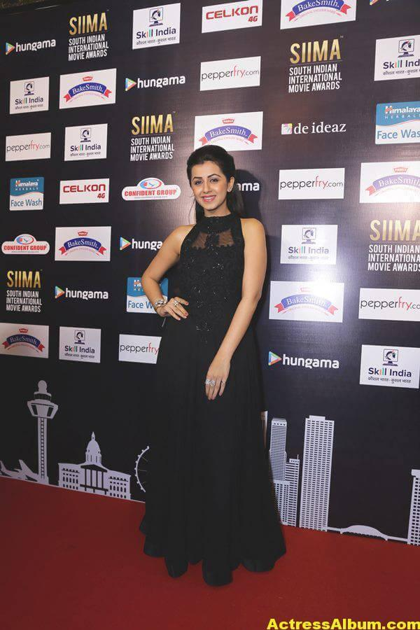 Glamorous Nikki Galrani Hot Photos In Black Dress (2)