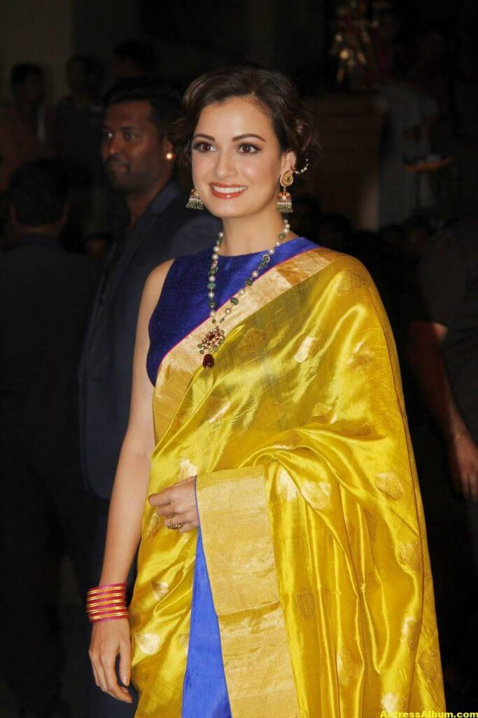Hot Photos Dia Mirza In Yellow Designer Saree (2)