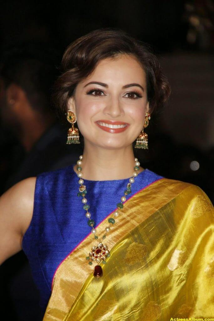 Hot Photos Dia Mirza In Yellow Designer Saree (3)