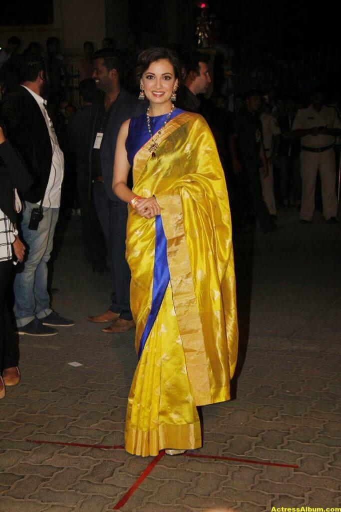 Hot Photos Dia Mirza In Yellow Designer Saree (4)