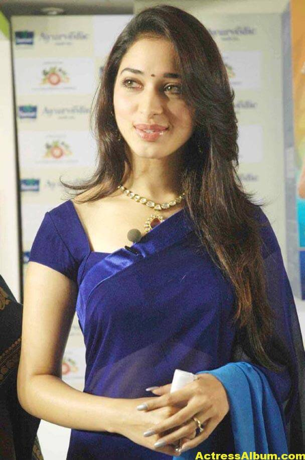 Milky Beauty Tamanna Photos In Blue Saree 6