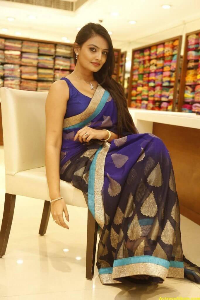 Nikitha Narayan Spicy Photos In Blue Saree (1)