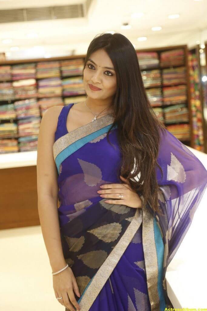 Nikitha Narayan Spicy Photos In Blue Saree (2)
