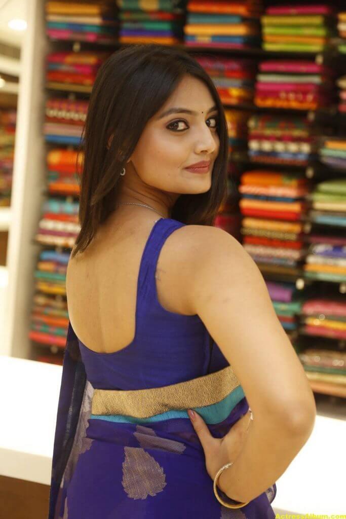 Nikitha Narayan Spicy Photos In Blue Saree (3)
