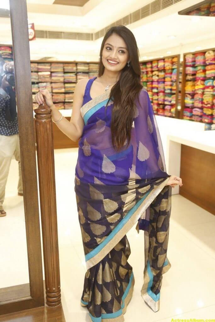 Nikitha Narayan Spicy Photos In Blue Saree (4)