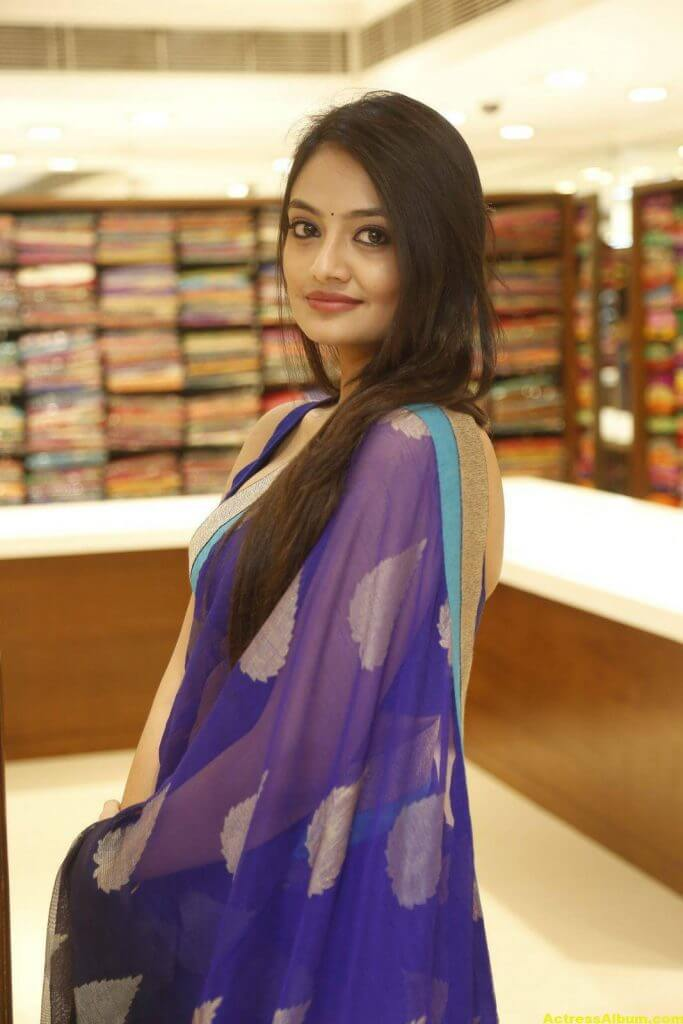 Nikitha Narayan Spicy Photos In Blue Saree (5)