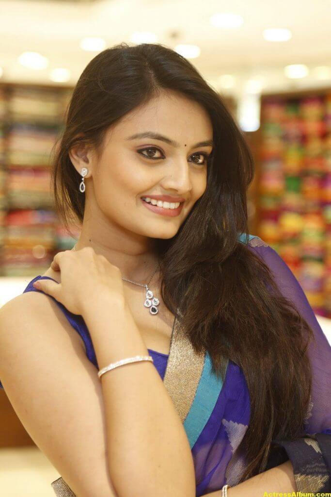 Nikitha Narayan Spicy Photos In Blue Saree (6)