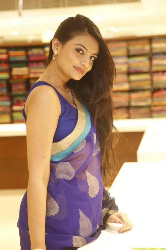 Nikitha Narayan Spicy Photos In Blue Saree (7)