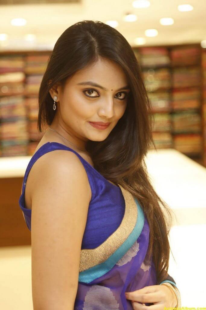 Nikitha Narayan Spicy Photos In Blue Saree (8) (1)