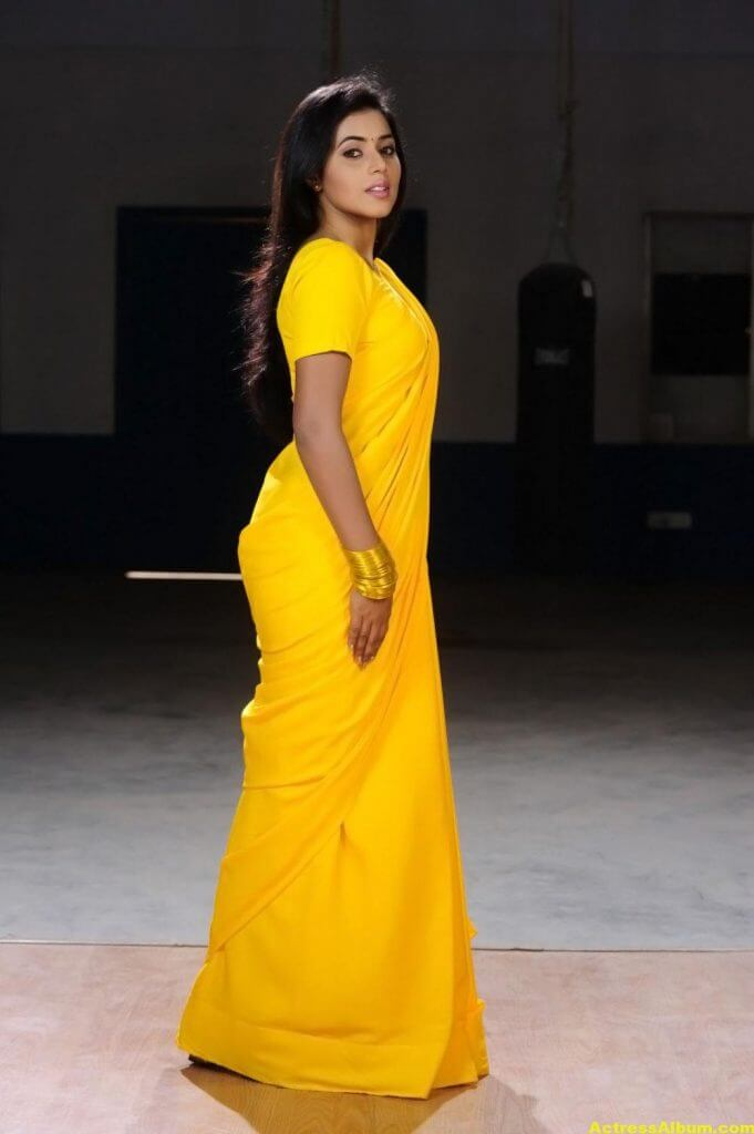Poorna Hot Looking Photos In Yellow Saree (3)