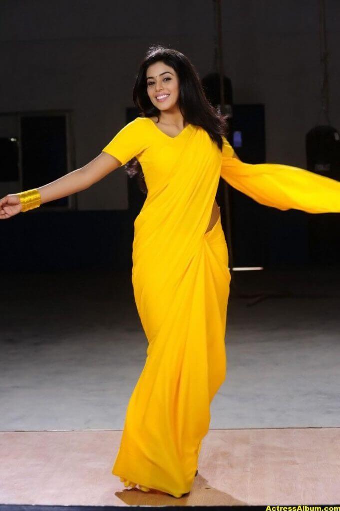 Poorna Hot Looking Photos In Yellow Saree (5)