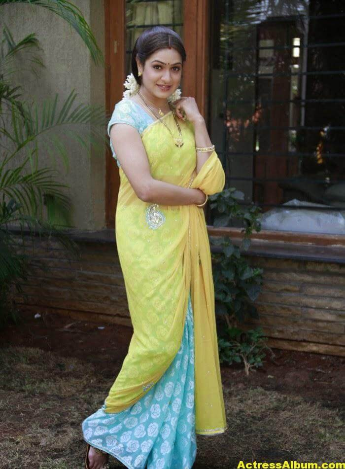 Actress Aditi Agarwal Hot Photos In Yellow Saree 1