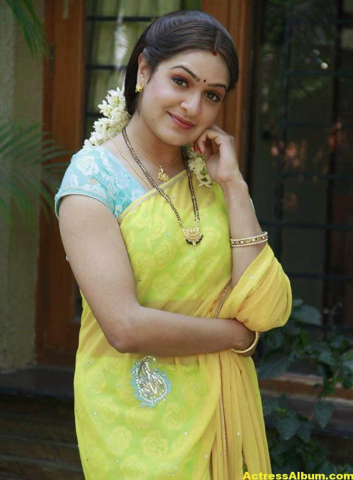 Actress Aditi Agarwal Hot Photos In Yellow Saree 4