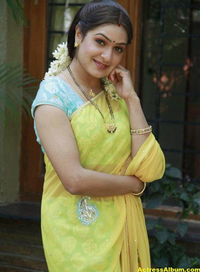 Actress Aditi Agarwal Hot Photos In Yellow Saree 6