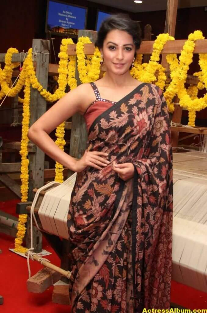 Actress Anita Hot Photos In Black Saree (5)