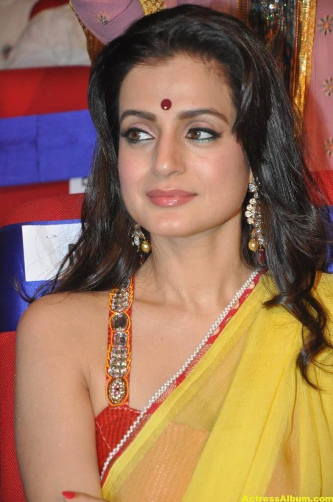 Amisha Patel Hot Stills In Yellow Saree 1