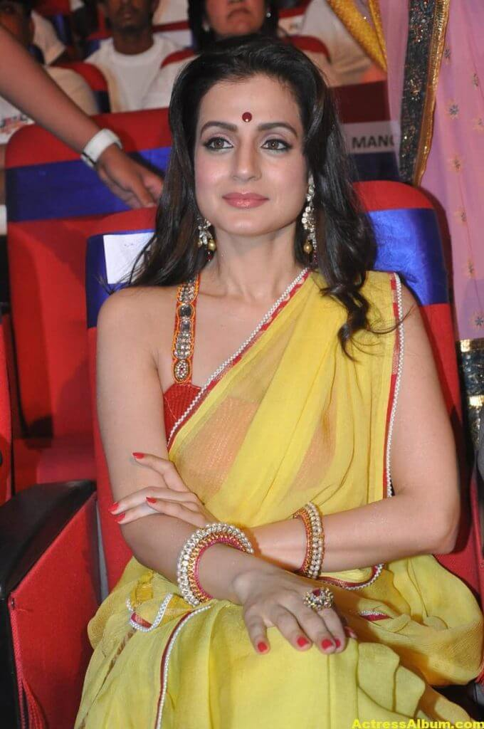 Amisha Patel Hot Stills In Yellow Saree 2