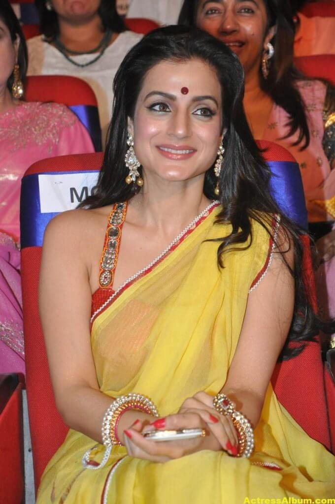 Amisha Patel Hot Stills In Yellow Saree 3