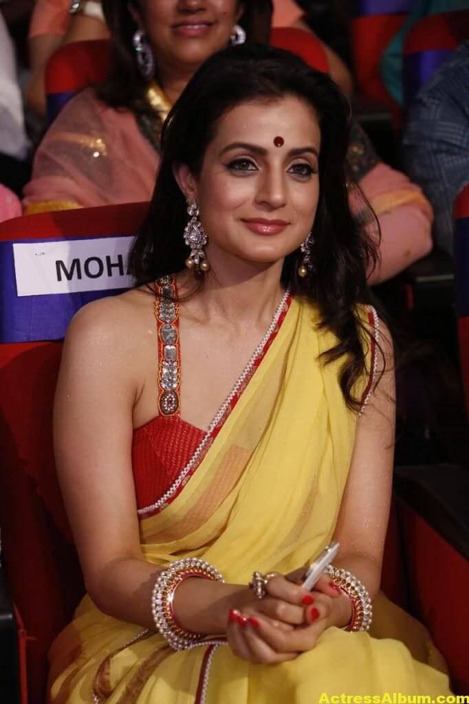 Amisha Patel Hot Stills In Yellow Saree 4