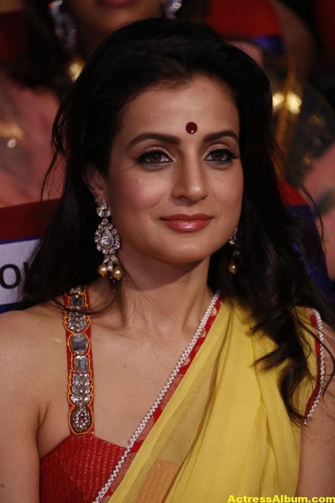 Amisha Patel Hot Stills In Yellow Saree 5