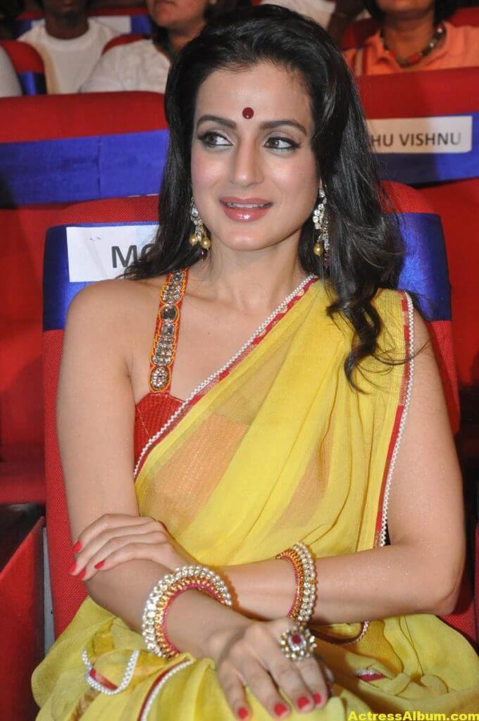 Amisha Patel Hot Stills In Yellow Saree 6