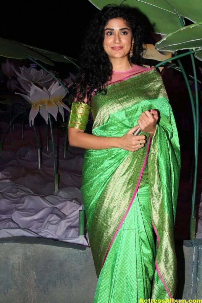 Anjala Zaveri Hot Photos In Green Saree (1)