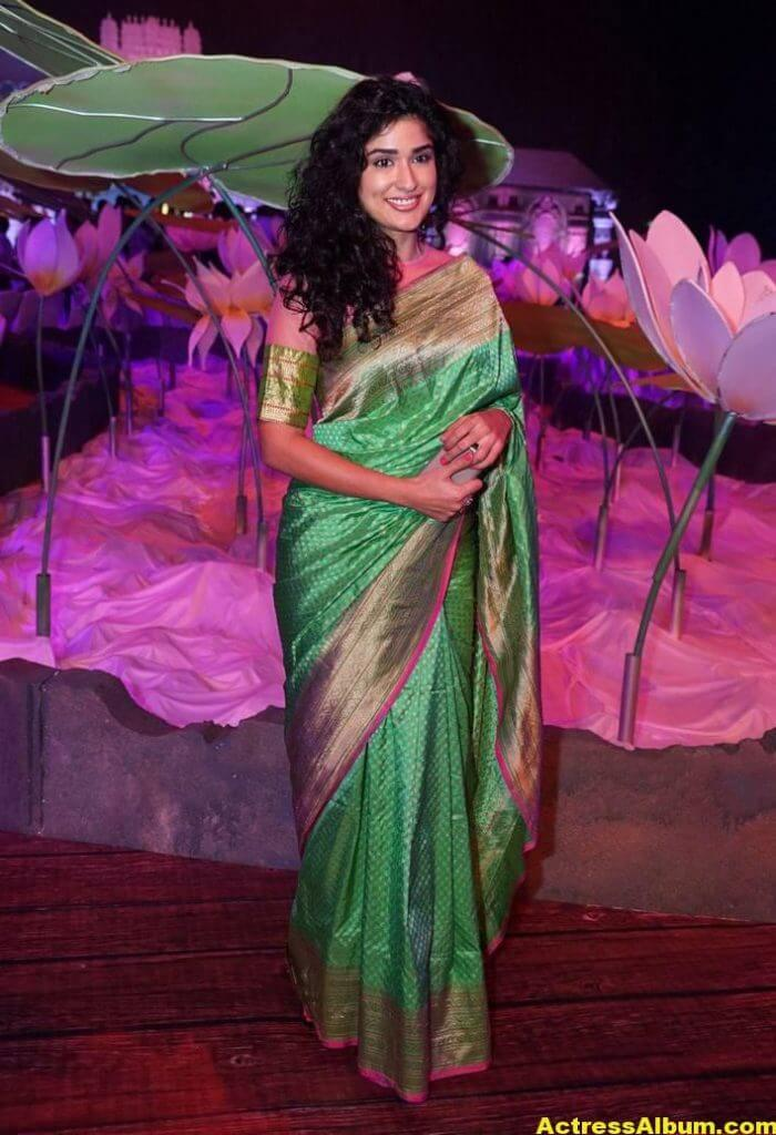 Anjala Zaveri Hot Photos In Green Saree (3)