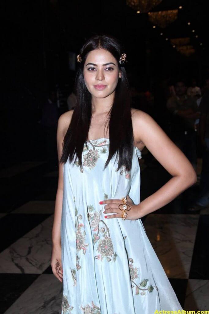 Glamorous Bindu Madhavi Photos In Blue Dress 5