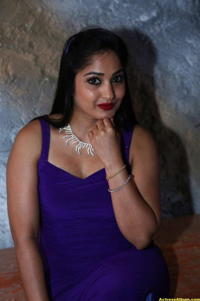 Madhavi Latha Hot Photos In Violet Dress 4