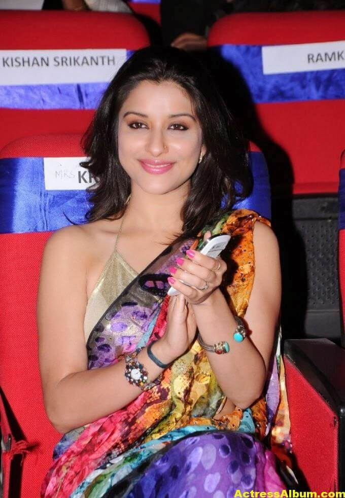 Madhurima Hot Hip Navel Photos In Multi Color Saree (2)