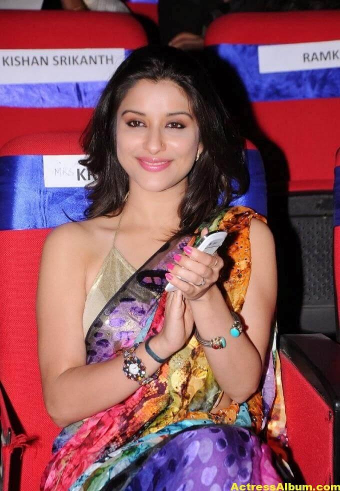 Madhurima Hot Hip Navel Photos In Multi Color Saree (2)