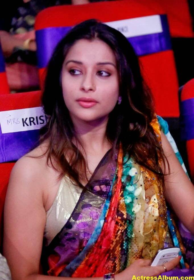 Madhurima Hot Hip Navel Photos In Multi Color Saree (3)
