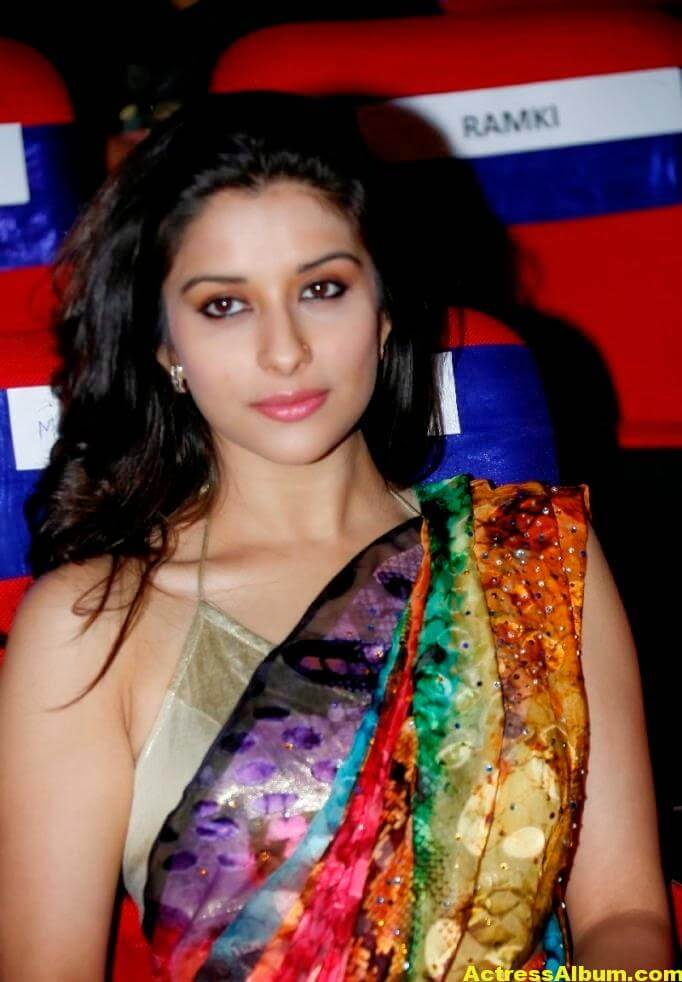 Madhurima Hot Hip Navel Photos In Multi Color Saree (4)