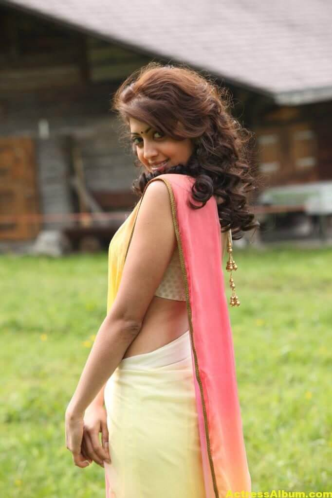 Pranitha Subhash Hip Navel Photos In Yellow Saree Hot (1)