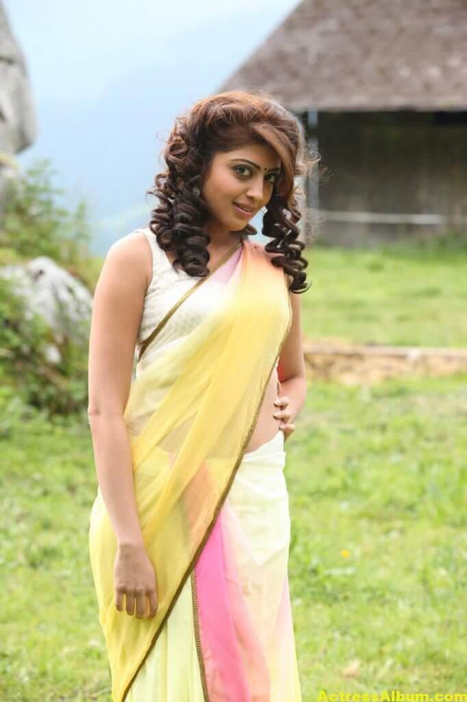 Pranitha Subhash Hip Navel Photos In Yellow Saree Hot (3)