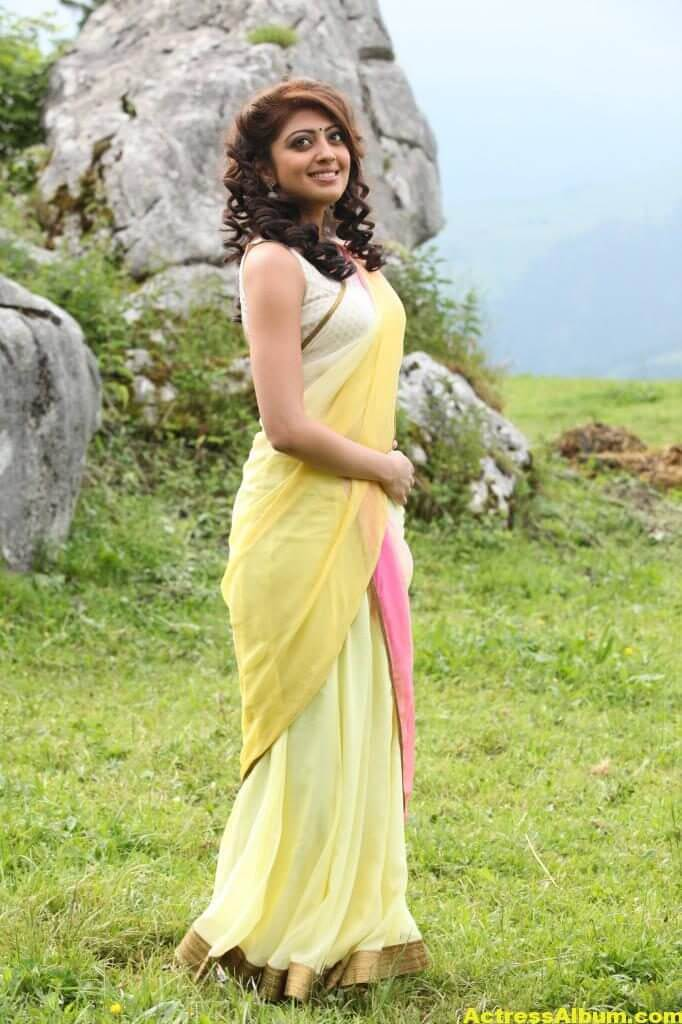 Pranitha Subhash Hip Navel Photos In Yellow Saree Hot (5)