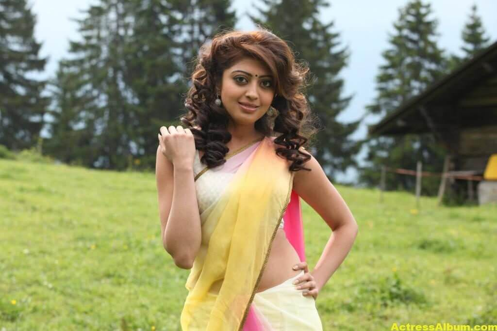 Pranitha Subhash Hip Navel Photos In Yellow Saree Hot (6)